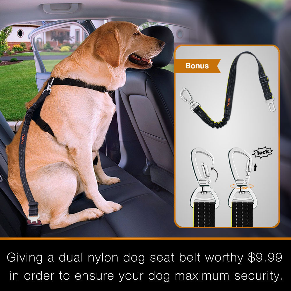iBuddy Dog Seat Cover for Back Seat with Mesh Window for Cars and SUVs