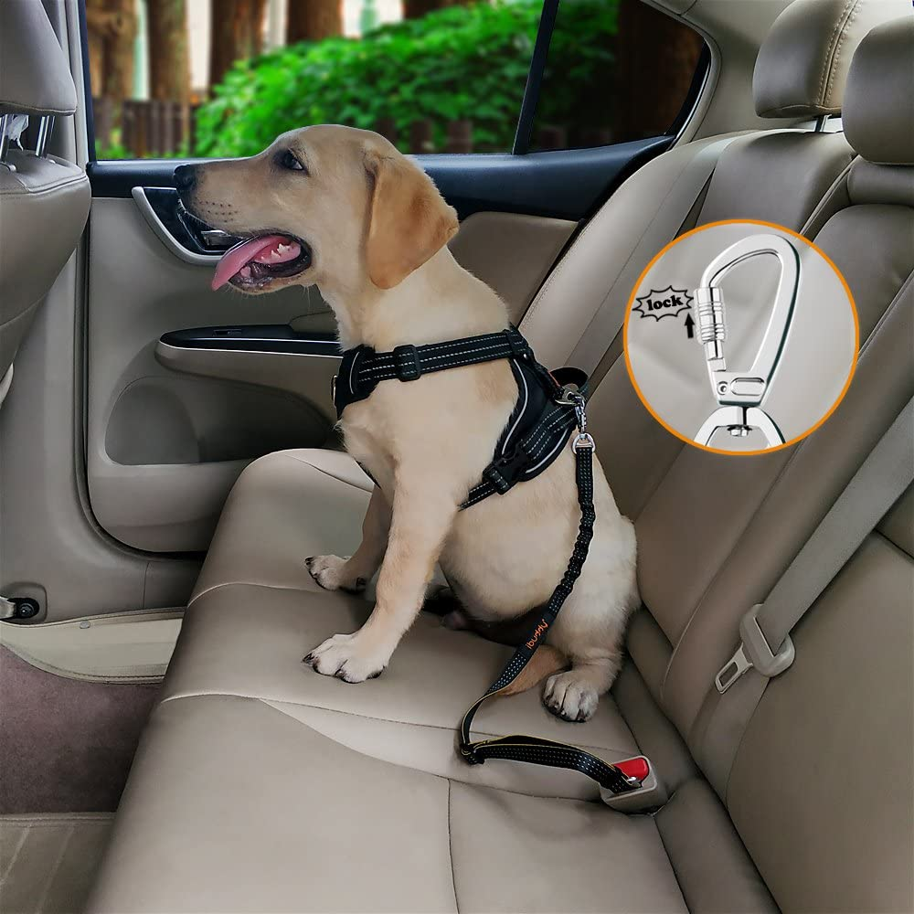 iBuddy Adjustable Dog Car Seat Belts With Dual Safe Bolt Hook for Small/Medium/Large Dogs (1 pack))