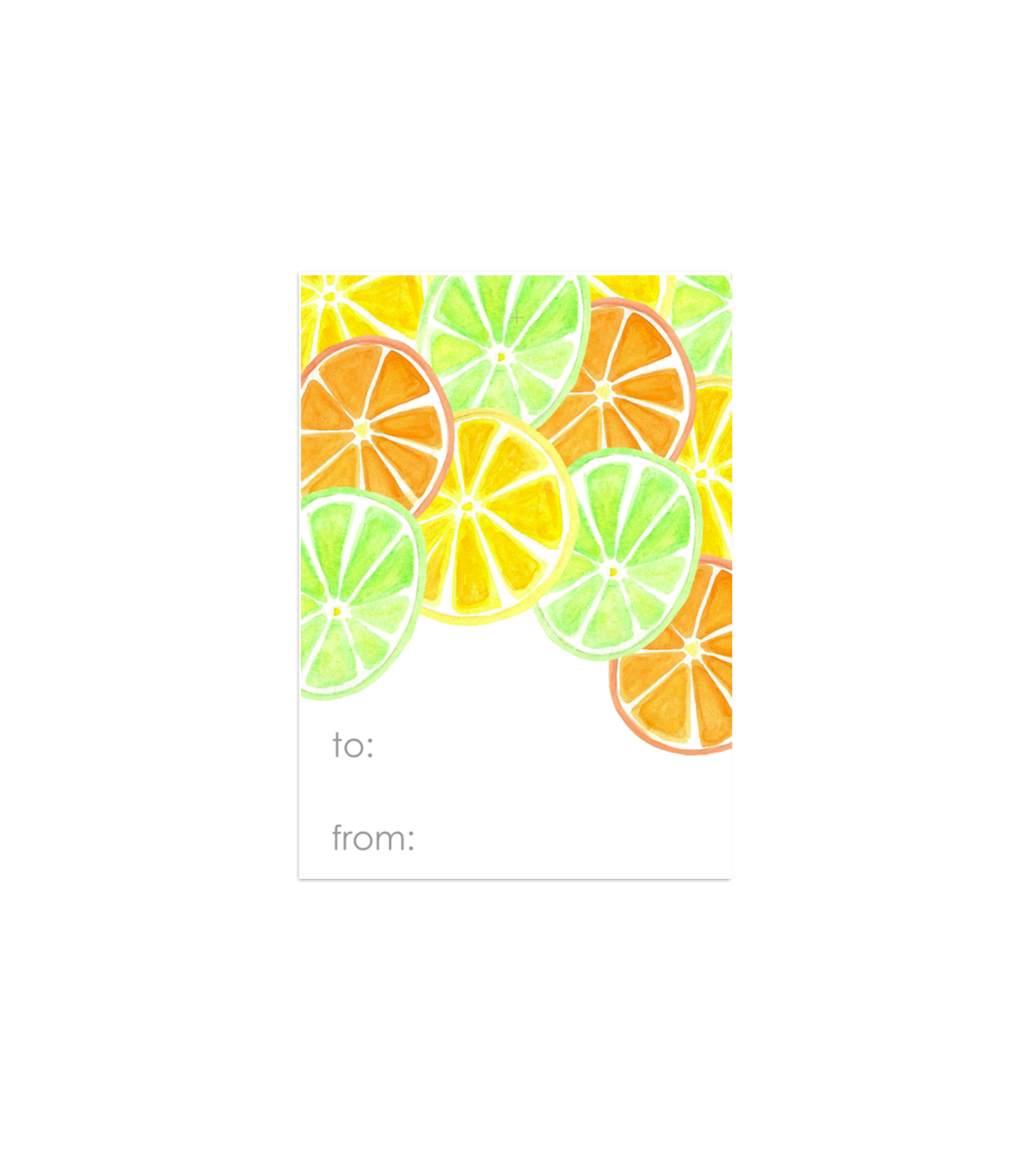 Citrus Gift Tags