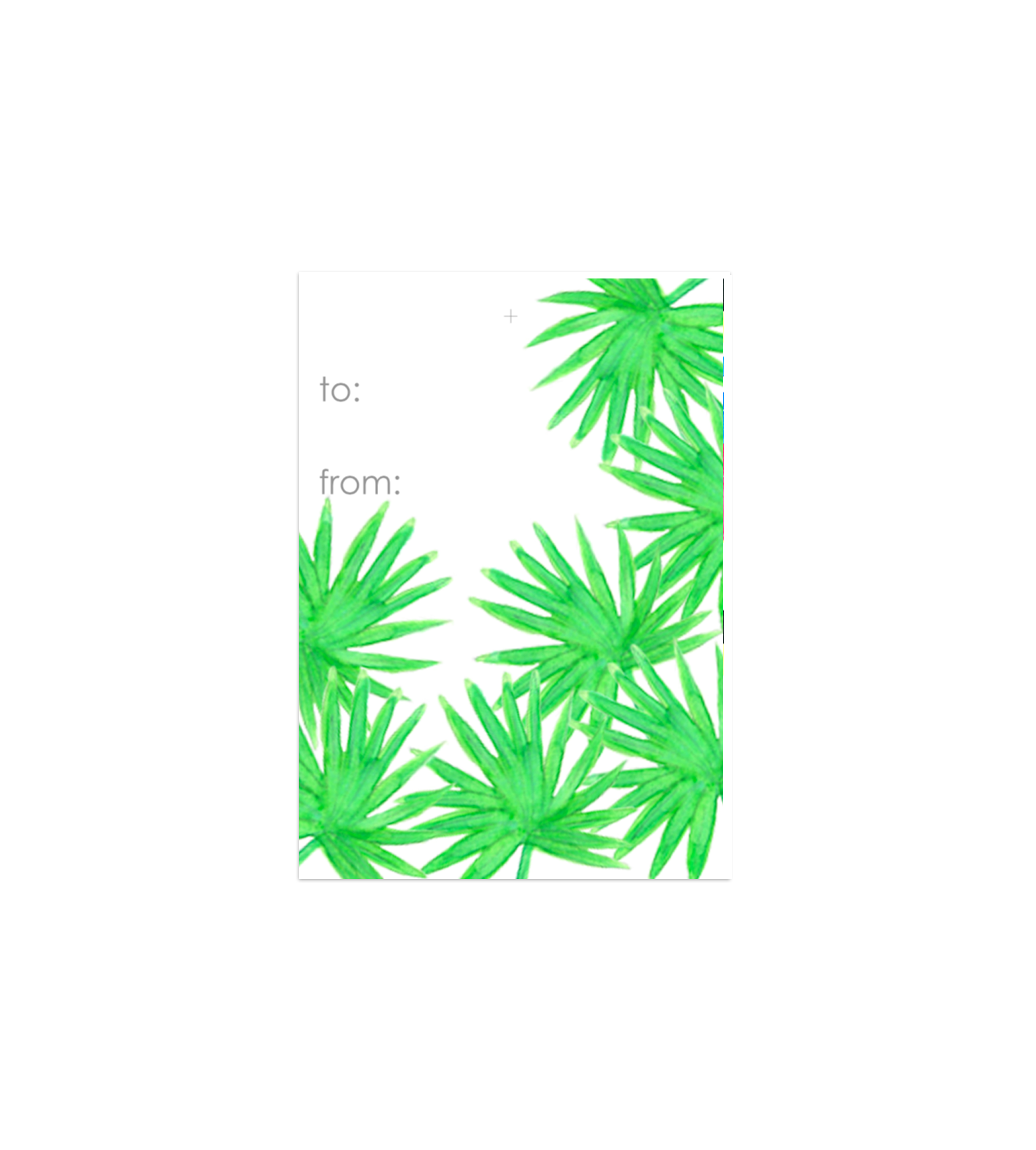 Palms Gift Tags