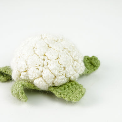Super Soft Crochet Turtle