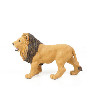 Wild Wildlife Collection: Lion