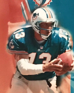 Dan Marino Miami Dolphins unsigned 8x10 photo pictorial ( Free Shipping )