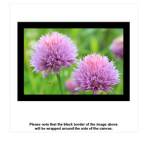 Wildflowers Canvas - Earth Printz