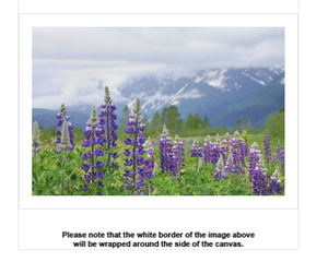 Lupine View Canvas - Earth Printz