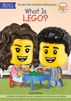 What Is LEGO? (What Was?)