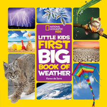 Load image into Gallery viewer, Little Kids First Big Book of Weather