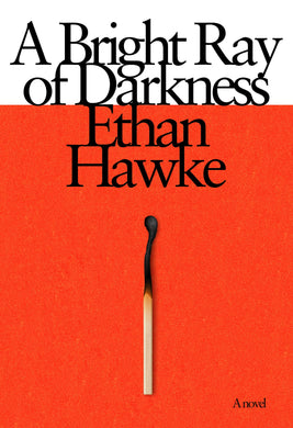 A Bright Ray of Darkness: A novel