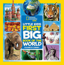 Load image into Gallery viewer, Little Kids First Big Book of the World