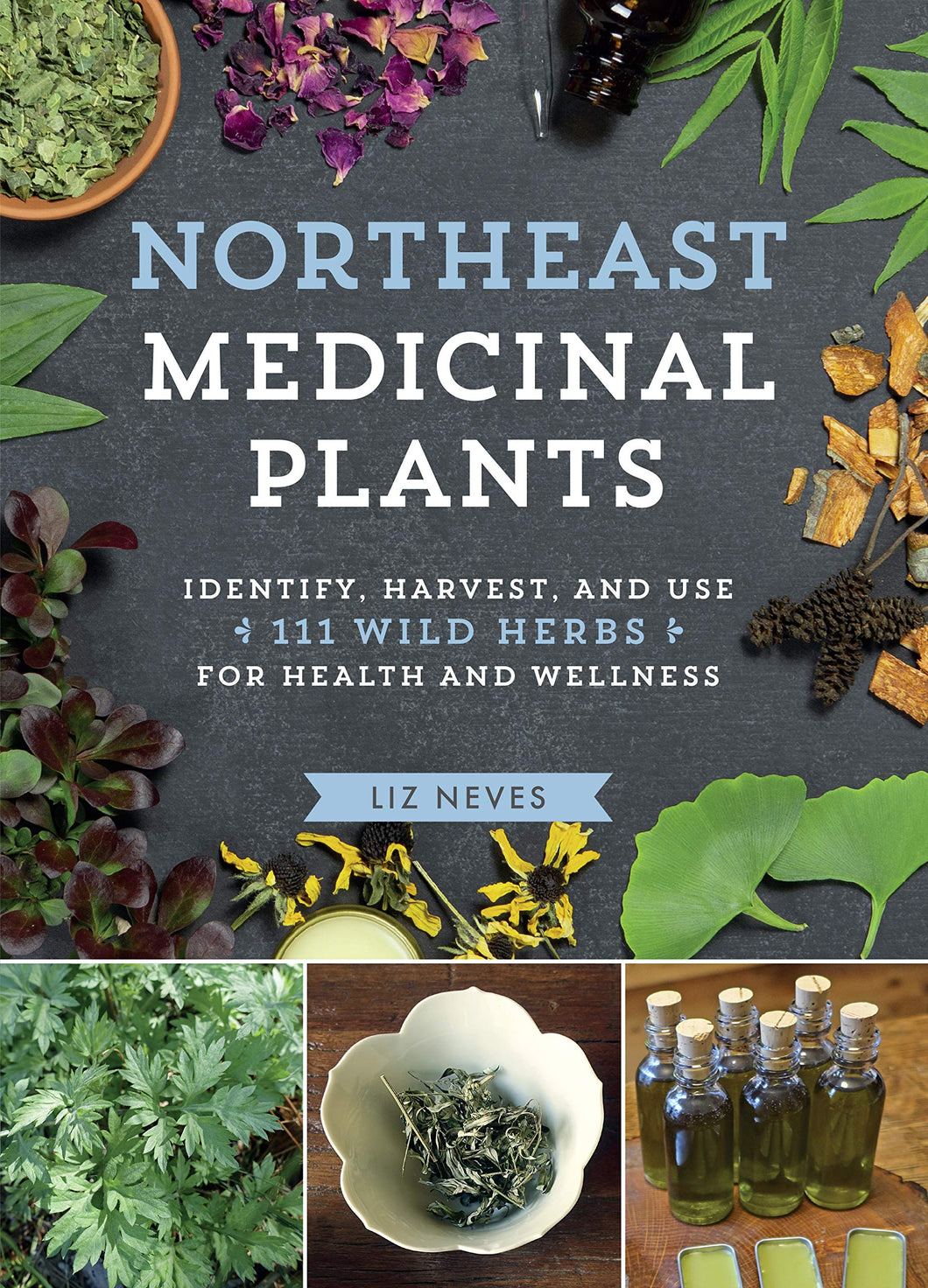 Northeast Medicinal Plants