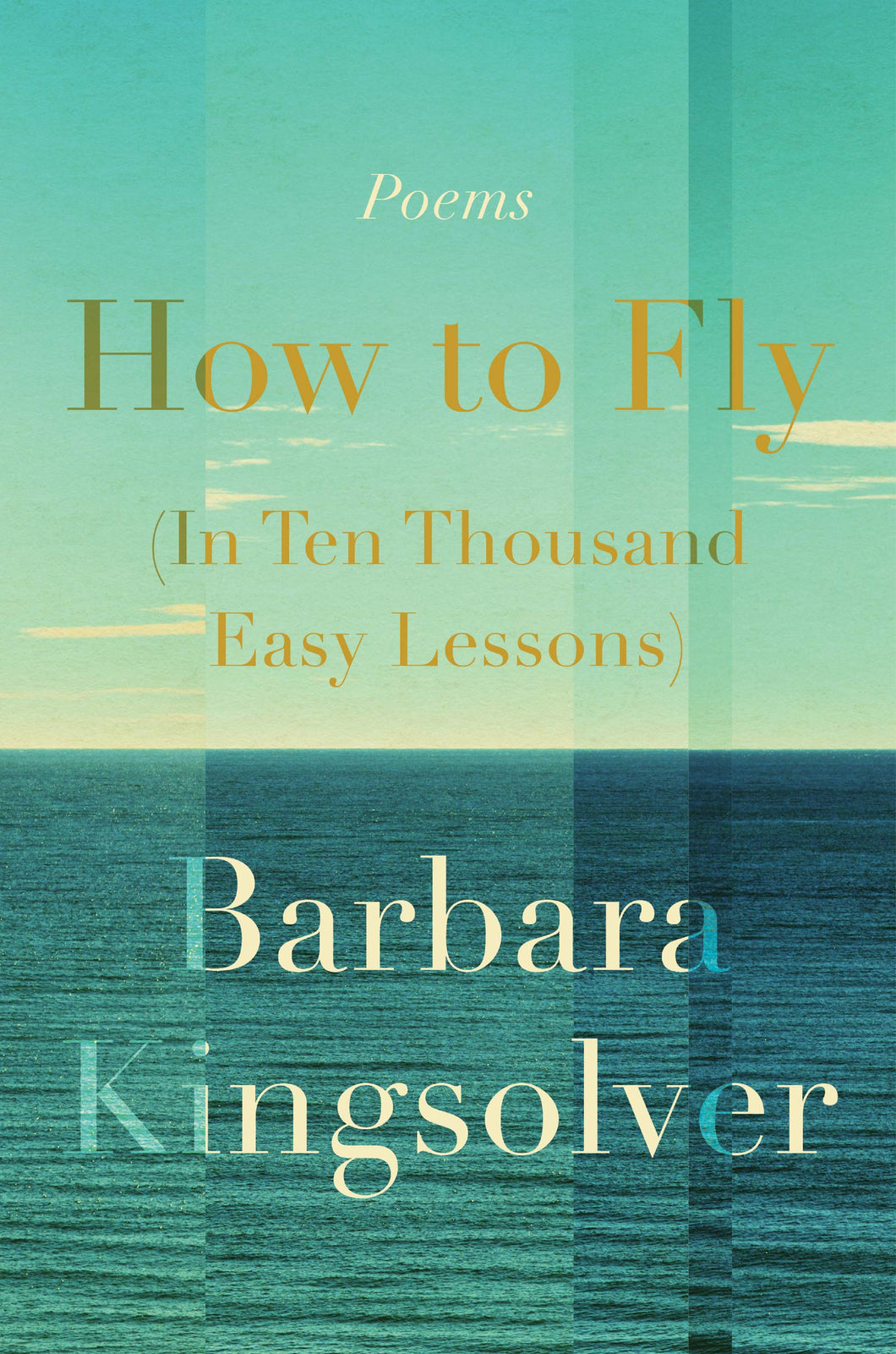 How to Fly: Poems (In Ten Thousand Easy Lessons)