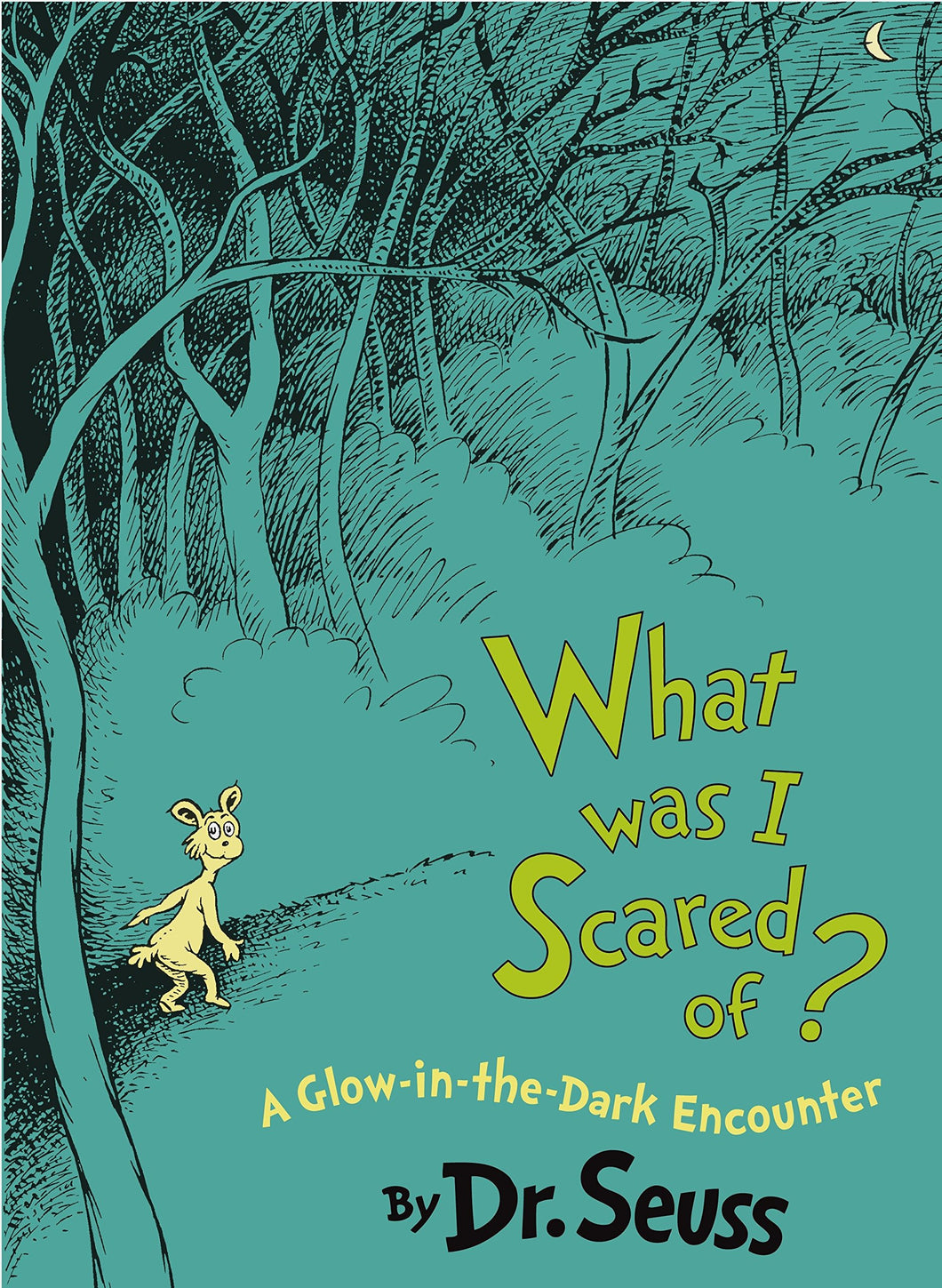 What Was I Scared Of? A Glow-in-the Dark Encounter