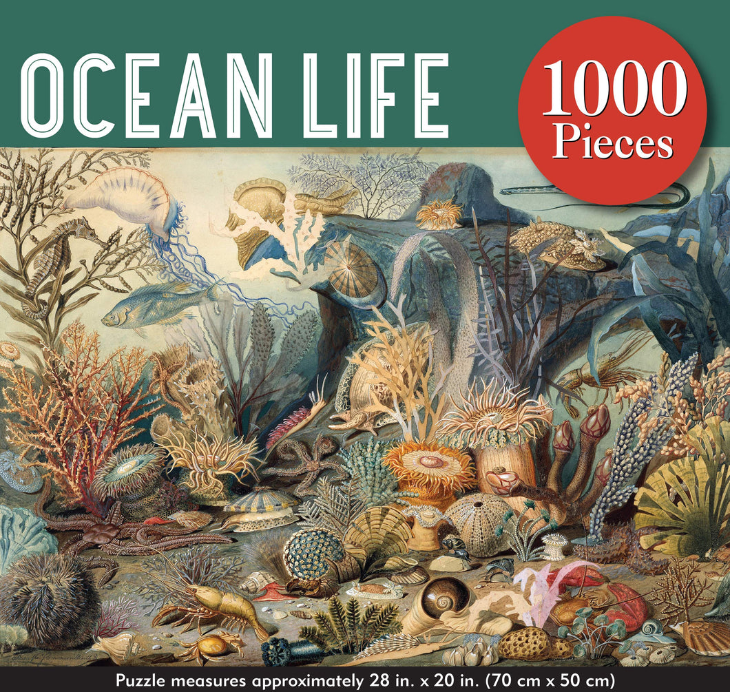 Ocean Life Jigsaw Puzzle (1000 pieces)