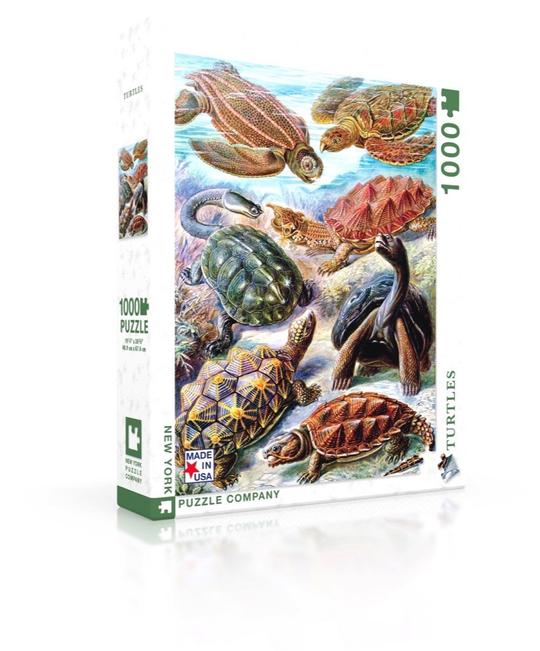 Turtles Jigsaw Puzzle (1000 pieces)