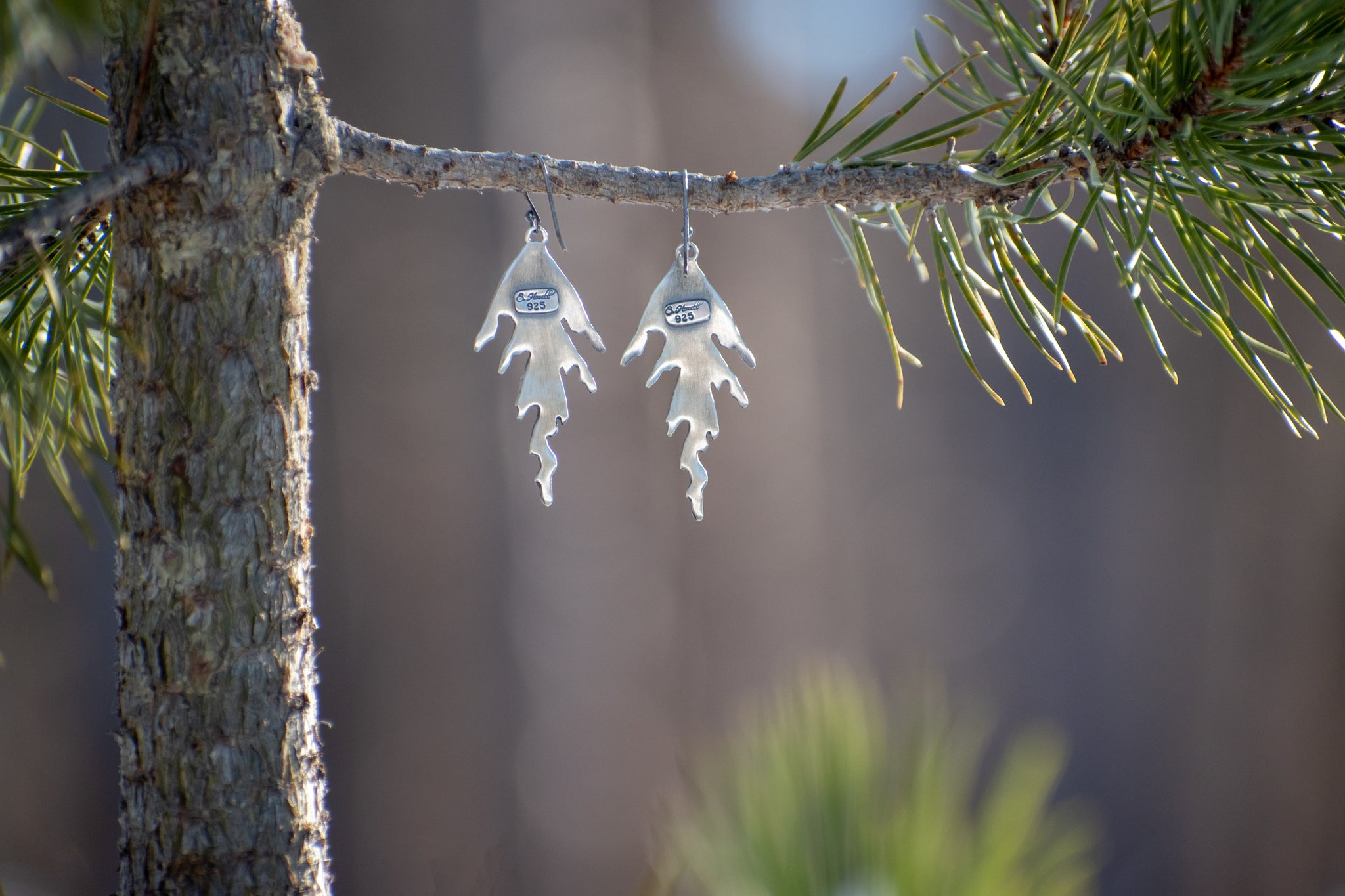 Back of handmade sterling silver cedar earrings hanging from branch