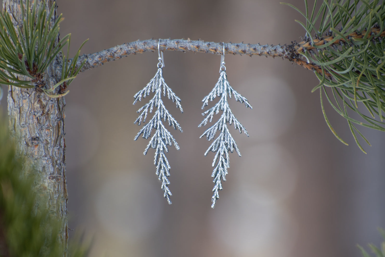Cedar Statement Earrings