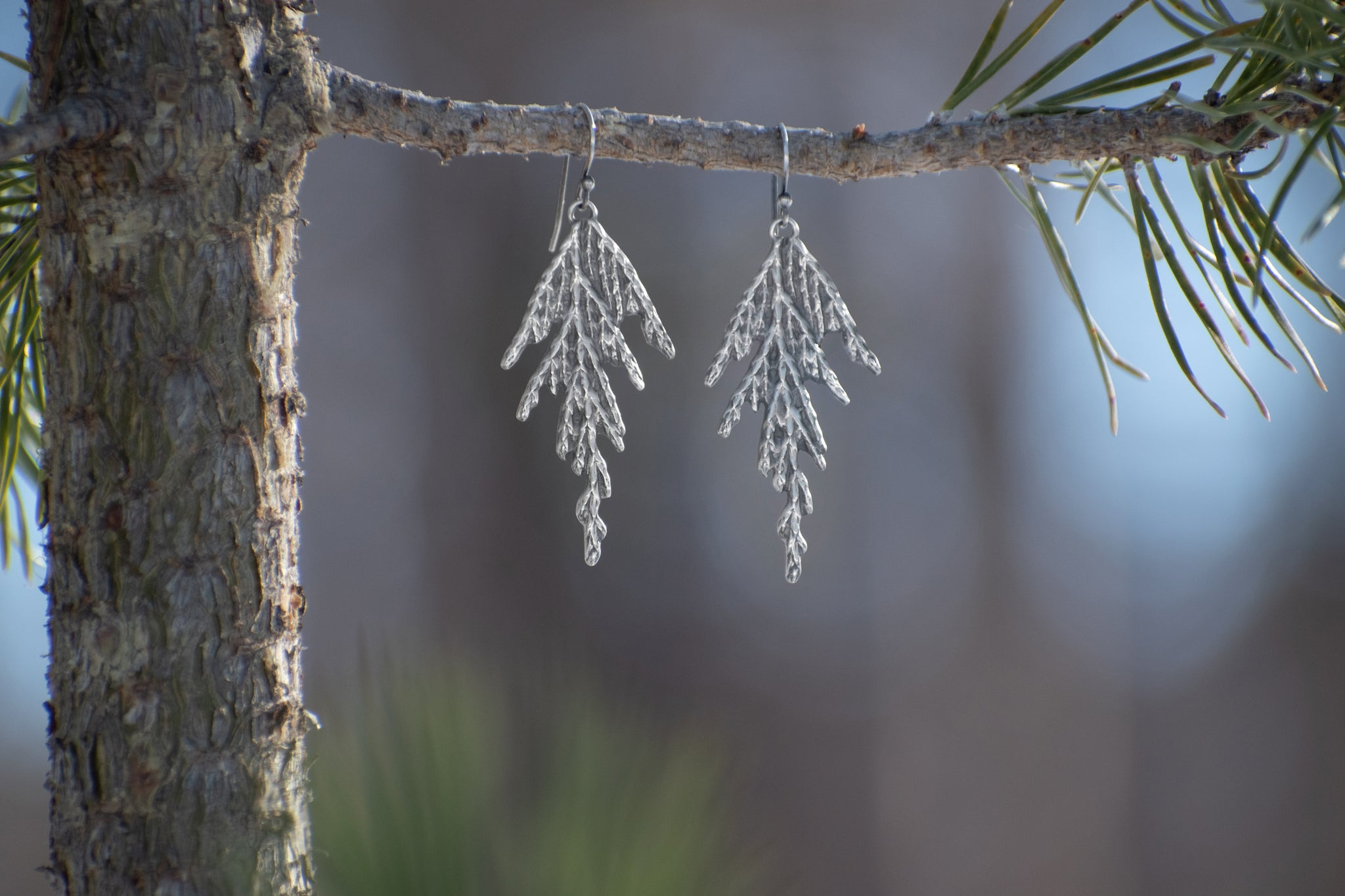 Handmade sterling silver cedar dangle earrings on branch