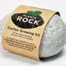 Load image into Gallery viewer, PLANTS ROCK! Cactus Rock