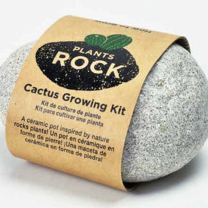 PLANTS ROCK! Cactus Rock