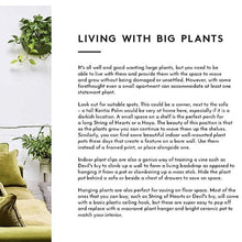 Load image into Gallery viewer, EMMA SIBLEY - The little book of Big Plants