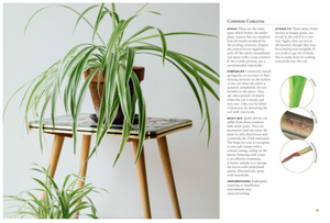 DR HOUSEPLANT - An indispensable guide to keeping your houseplants happy