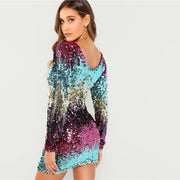 Multicolour Sequins Iridescent Round Neck Dress
