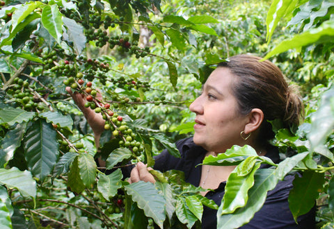 Patricia Perez - coffee farmer
