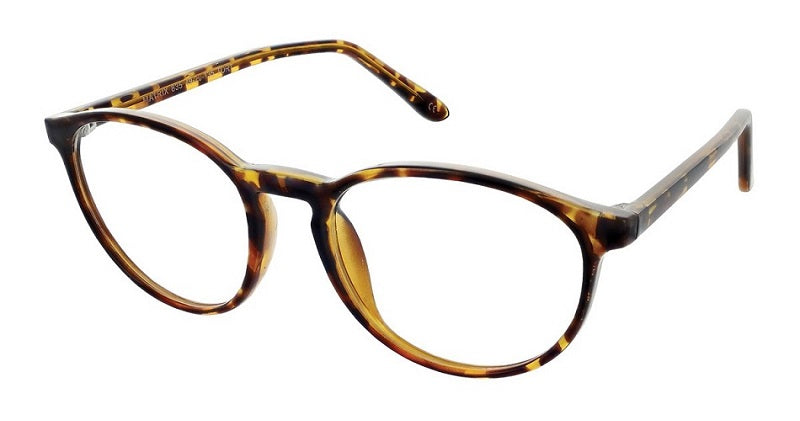 mens prescription glasses nm1367