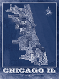 Chicago Neighborhood Type Map