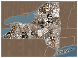 New York State Type Map