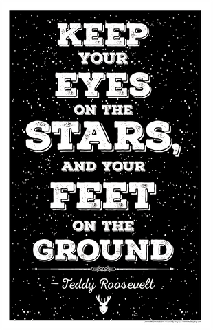 Eyes on the Stars - Teddy Rooselvelt Quote