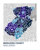 Morris County Neighborhood Type Map