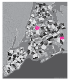 5 Borough Neighborhood Type Map