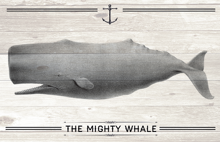 The Mighty Whale