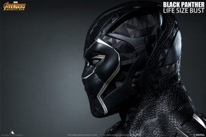 Queen Studios Life Size Black Panther (Ready Stock)