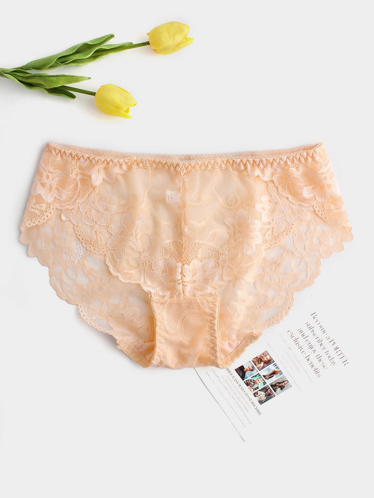 Plus Size Embroidered Sexy Brief
