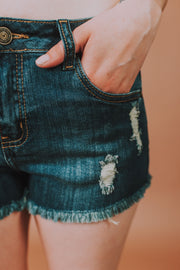 5-Pocket Distressed Dark Denim Fray Hem Jean Shorts - Phoebe Jane