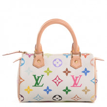 Load image into Gallery viewer, Louis Vuitton Multicolor Mini Speedy