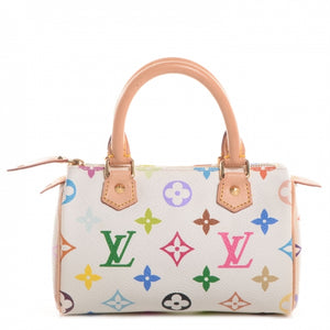 Louis Vuitton Multicolor Mini Speedy