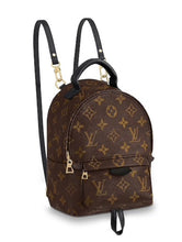 Load image into Gallery viewer, Louis Vuitton Monogram Palm Springs Mini Backpack