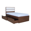 Ashton with 2 Drawer Bed 36x75 - Mandaue Foam