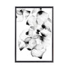 Black With Petals Framed Art - Mandaue Foam