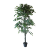 CH07614529 180cm RT Ficus Tree with Pot