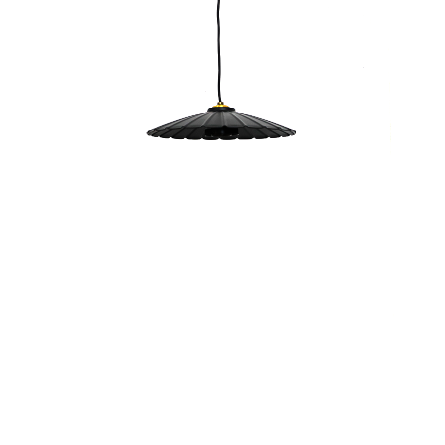 Fz-a101 Black Metal Pendant Lamp