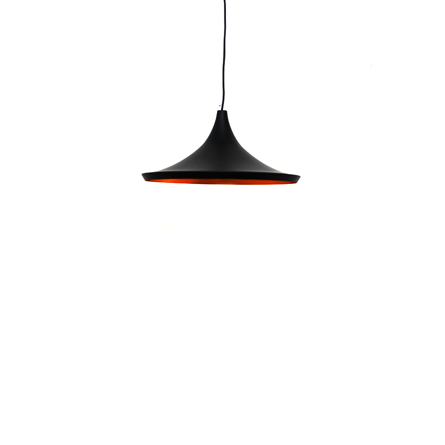 Fz-c090 Black Metal Pendant Lamp