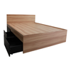 Kaitlyn Queen Bed with 2 Pull Out Drawer