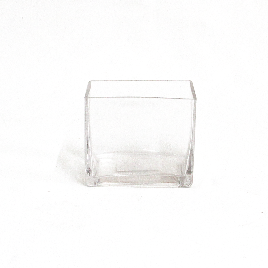 Small Square Clear Vase