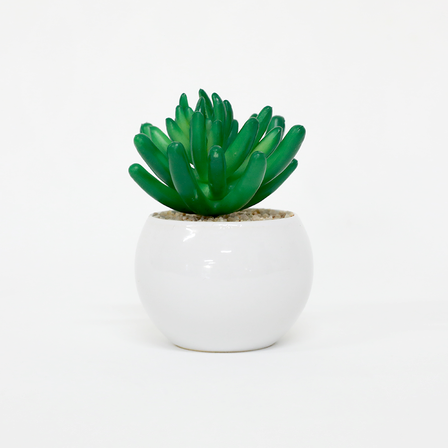 Succulent in Round Pot 32cm