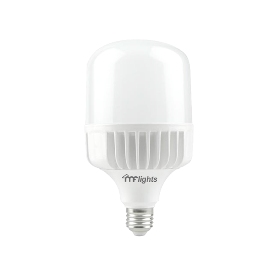 T120PA-40W/Daylight White E27