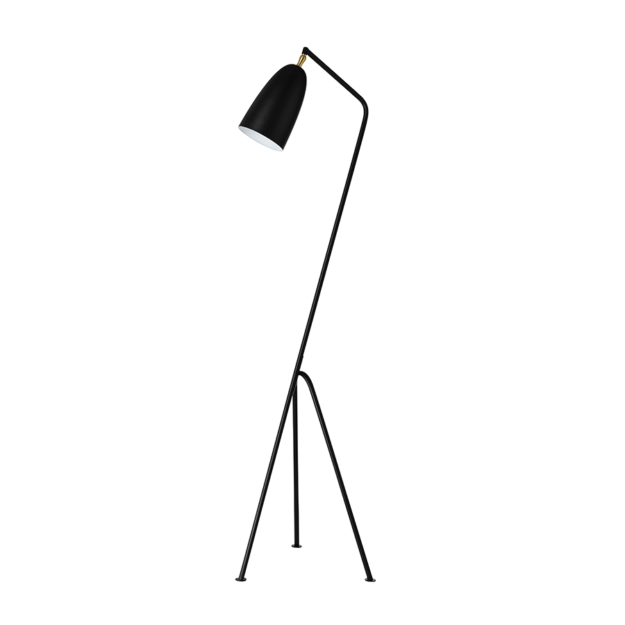 TY-39018 E27 Black Floor Lamp